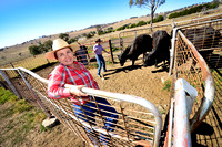 WOOLOMIN ORGANIC BEEF PRODUCERS EXPORTING TO CHINA